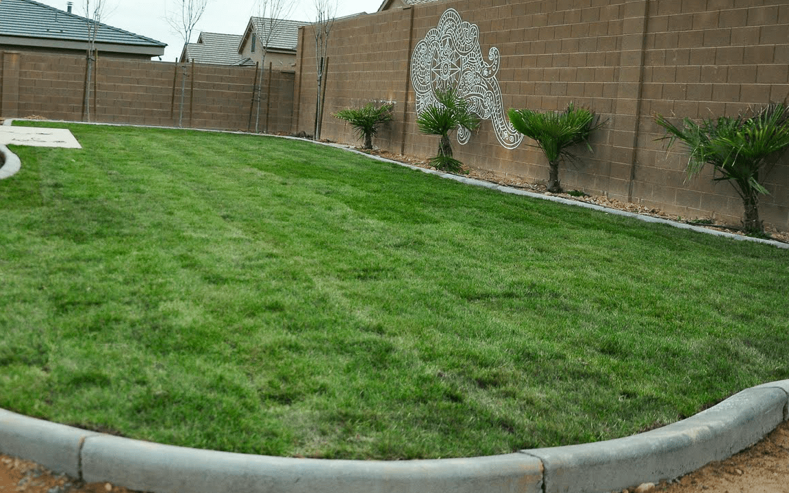 How to Care for Sod… In St.George